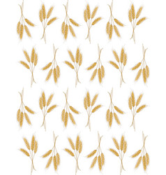 Seamless background with wheat ears vector image