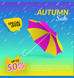 Umbrella Autumn sale vector image
