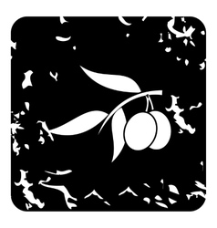 Fresh olive tree branch with olives icon vector