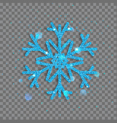 Big shiny christmas snowflake vector