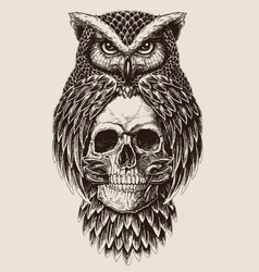 Elaborate drawing of owl holding skull vector