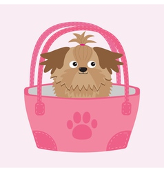 Little glamour tan shih tzu dog in the bag vector