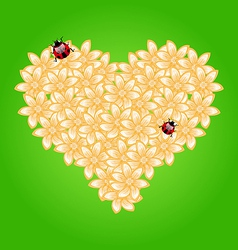 Romantic heart flowers and ladybug vector image vector image