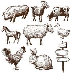 Set of farm animals isolated on a white background vector