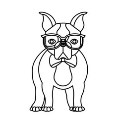 Cute french bulldog male with hipster accessory vector