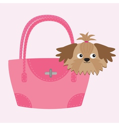 Little glamour tan shih tzu dog in the pink bag vector