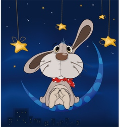 Rabbit on the moon vector image vector image