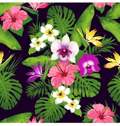 Tropic orchid dark vector image
