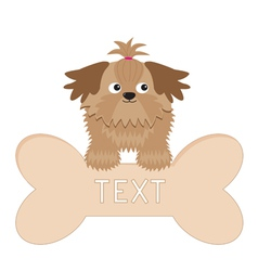 Little glamour tan shih tzu dog and big bone isola vector