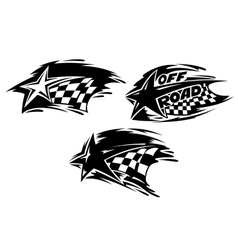 Racing stars with flags vector image