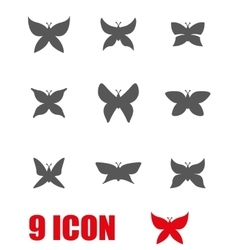 grey butterfly icon set vector image