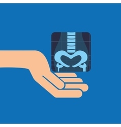 Hands and x-ray body icon vector