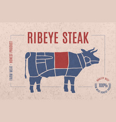 label for meat with text ribeye steak vector image vector image