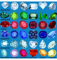 set of precious stones of different cuts and color vector image