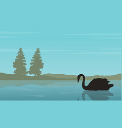 Silhouette of swan on lake collection vector