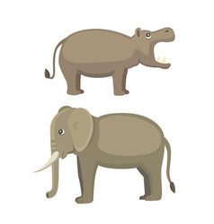 Elephant and hippo vector