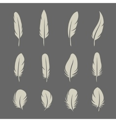 Feathers retro set vector image vector image