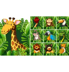 Many wildlife behind the green bush vector