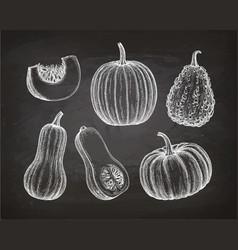 Set of pumpkins on chalkboard vector