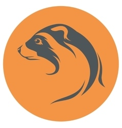Ferret icon and silhouette vector image vector image