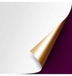 Curled golden corner paper on vinous background vector