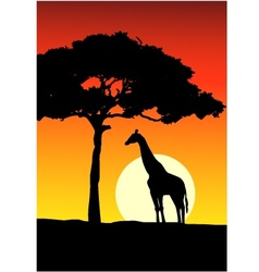 African Sunset background with giraffe vector image vector image
