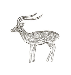 Antelope coloring for adults vector