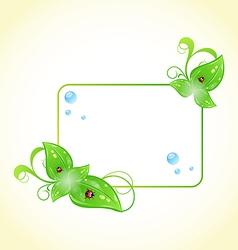 Eco friendly frame with green leaves and ladybugs vector image