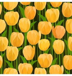 Tulip flowers field seamless vector