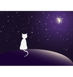 Lonely cat watching stars vector