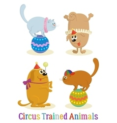 Trained animal dog and cat set vector