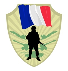 Army of France vector image vector image