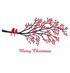 Christmas card with red berries and birds vector image