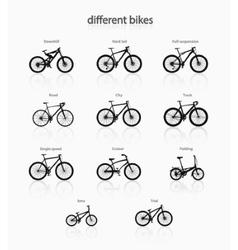 Different bikes vector