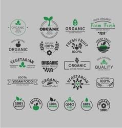 organic and natural logo vector image vector image