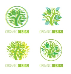 Floral logo set1 vector