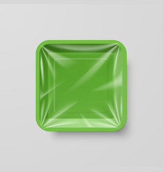 empty green plastic food square container on gray vector image vector image