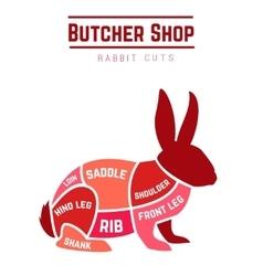 Rabbit cuts diagram for Butcher shop vector image vector image