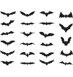 Bats collection vector