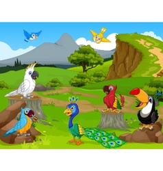 Funny different kind of birds cartoon the jungle w vector