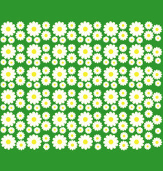 Chamomile on a green background vector