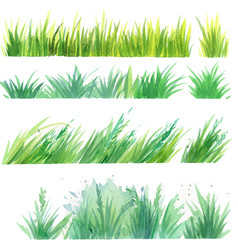 Grass painted elements vector
