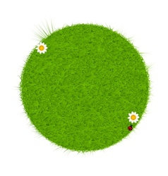 Green eco friendly label from green grass vector image