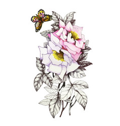 hand drawn pink flower with butterfly isolated on vector image