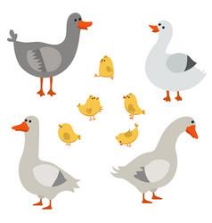 Set of cute geese set of cute geese vector