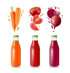 Vegetable Juices Set vector image vector image