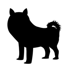 silhouette of dog icon vector image