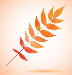 Orange watercolor painted leaf vector image