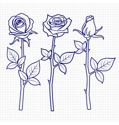 hand drawn sketch roses flowers vector image vector image