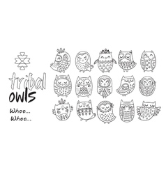 Outline hand drawn tribal owl set vector image